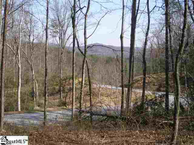 1 Carolina Wren Trail Lot 91 Carolina Wren Trail, Marietta, SC, 29661: Photo 3