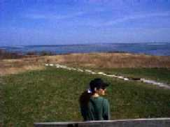 Fort Hill - Eastham on Cape Cod