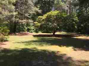 667 Shady Grove Road, Carthage, NC, 28327: Photo 22