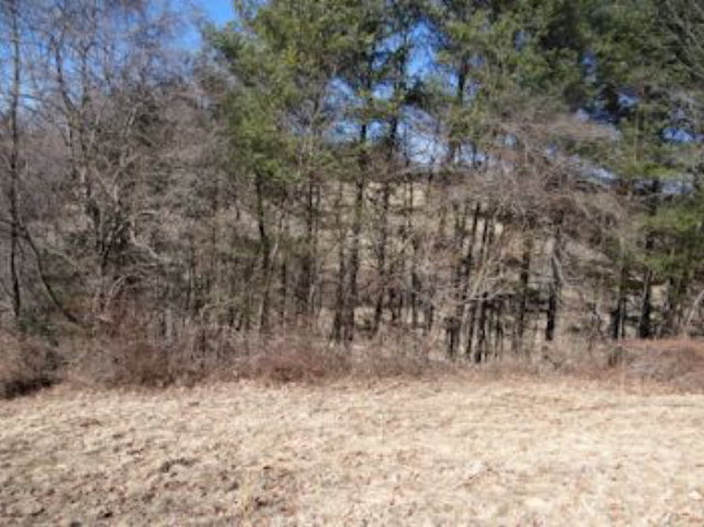 0 Rich Valley Road, Abingdon, VA, 24210 -- Homes For Sale
