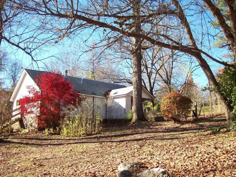 Homes For Sale In Mammoth Springs Ar
