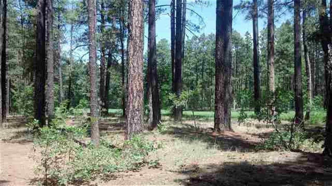 3376 red robin rd pinetop lakeside az 85935 for sale