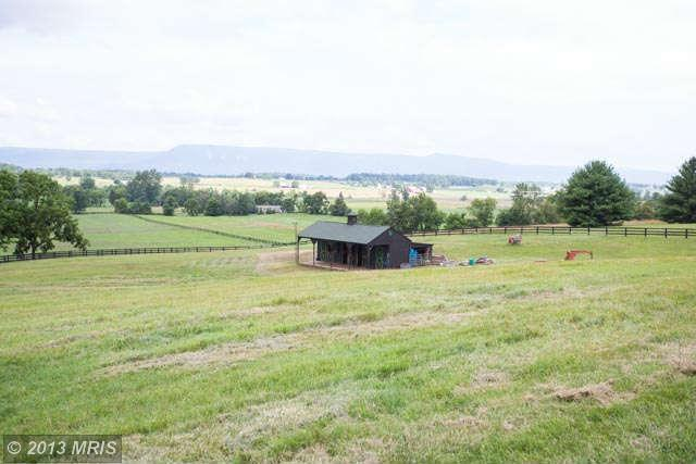 1011 Harper Valley Road, Luray, VA, 22835 -- Homes For Sale