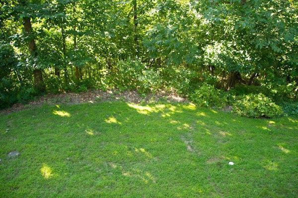 5830 Oak Forest Ln, Houston, MN, 55943: Photo 23