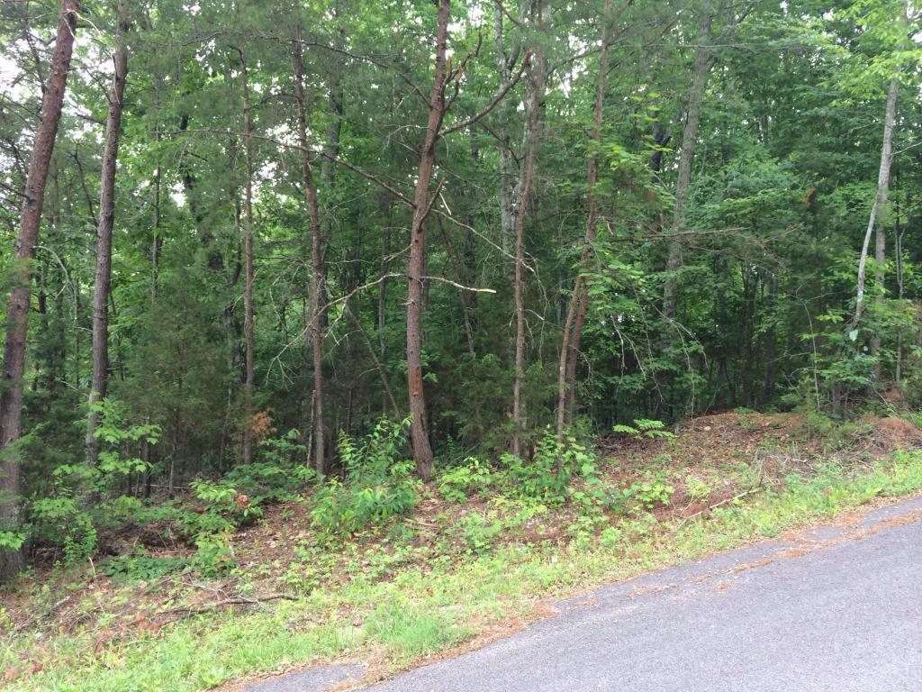 Coleman Lane, Powell, TN, 37849 -- Homes For Sale