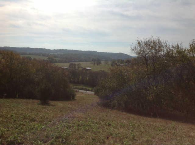 0 Ragsdale Rd, Columbia, TN, 38401 -- Homes For Sale
