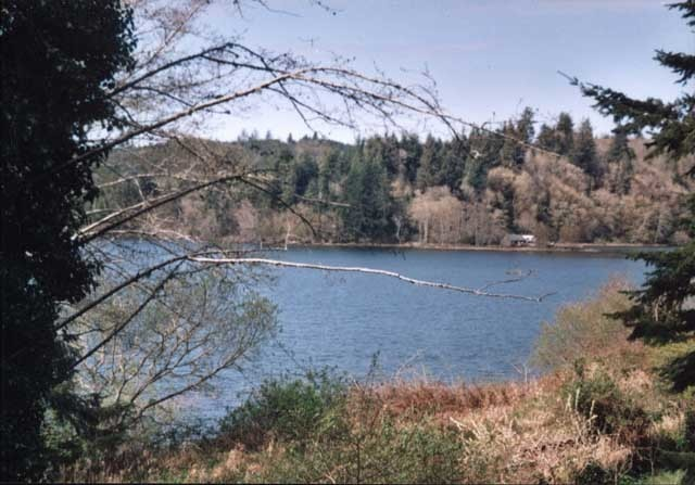 Siltcoos Station Rd, Westlake, OR, 97439 -- Homes For Sale