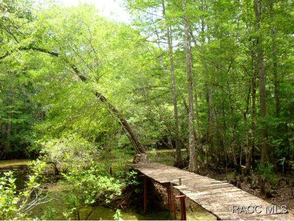 Homes For Sale In Floral City Fl