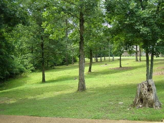 30 Pebble Creek, Counce, TN, 38326 -- Homes For Sale