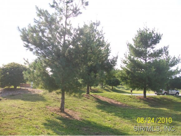 0 Hickory Grove, Jerseyville, IL, 62052 -- Homes For Sale