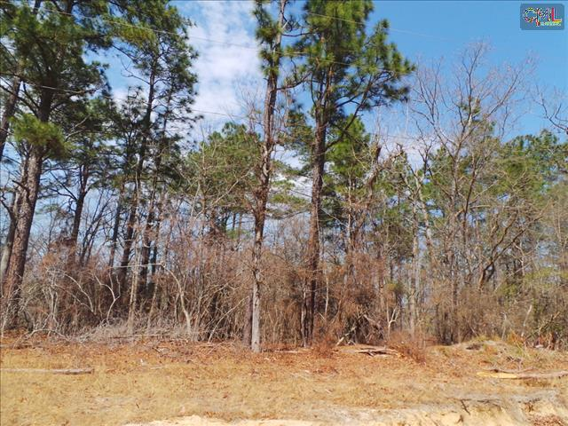 34 Calmont Drive 34, Swansea, SC, 29160 -- Homes For Sale