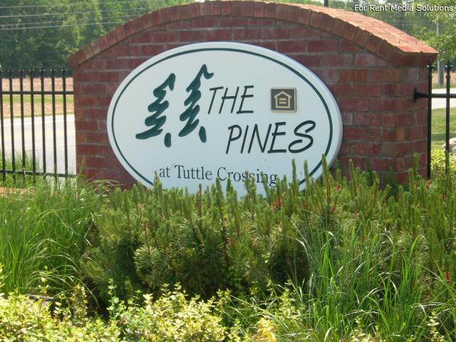 The Pines at Tuttle Crossing, Dublin, OH, 43016: Photo 2