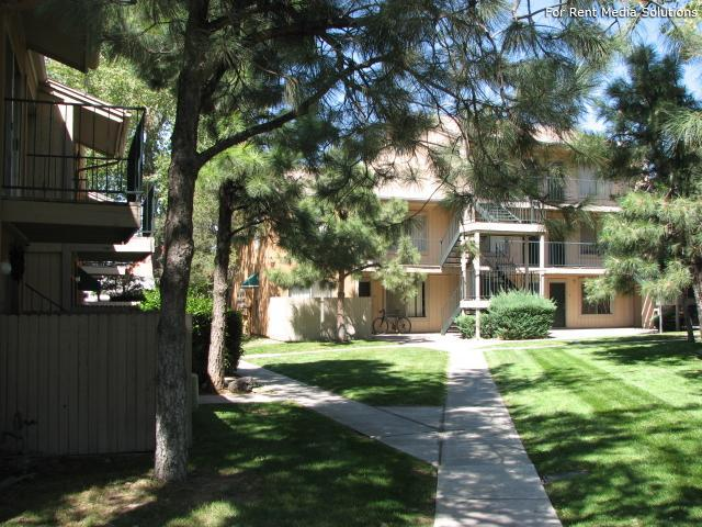 Pinewood Estates, Albuquerque, NM, 87110: Photo 33