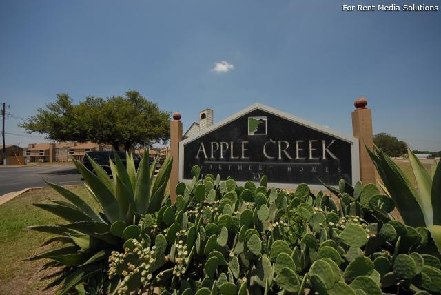 Apple Creek, Georgetown, TX, 78626: Photo 6
