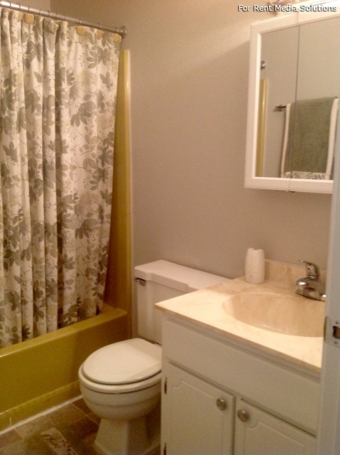 Capitol Village, Lansing, MI, 48911: Photo 5