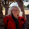 Real Estate Agents: Pamela Willis, Lea-county, NM