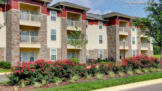 . 213 Homes for Rent in Murfreesboro  TN   Homes com