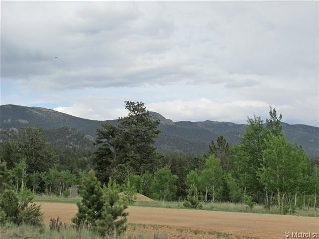 435 Willow Way, Jefferson, CO, 80456 -- Homes For Sale