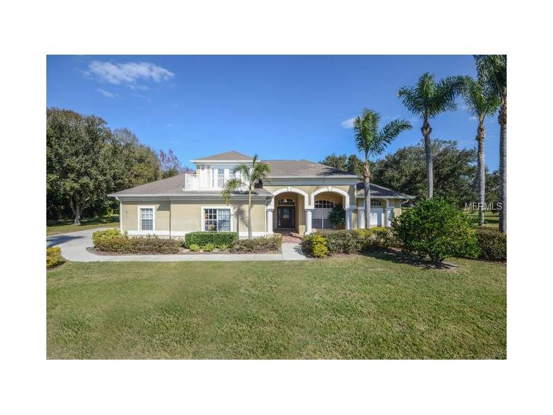 17913 simms road odessa fl 33556 for sale