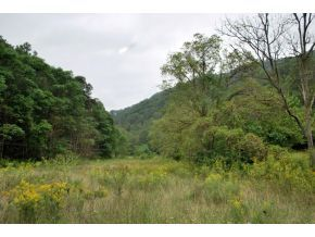 4951 England Valley Road, Duffield, VA, 24244 -- Homes For Sale