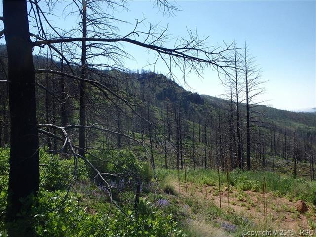 4129 pyramid mountain road cascade co 80809 for sale