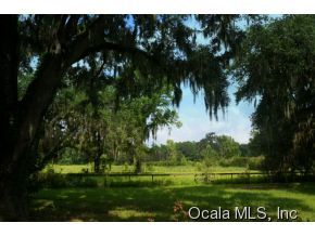 19115 Nw 100 Avenue Rd, Micanopy, FL, 32667 -- Homes For Sale