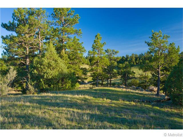 25363 County Road 13, Elbert, CO, 80106 -- Homes For Sale