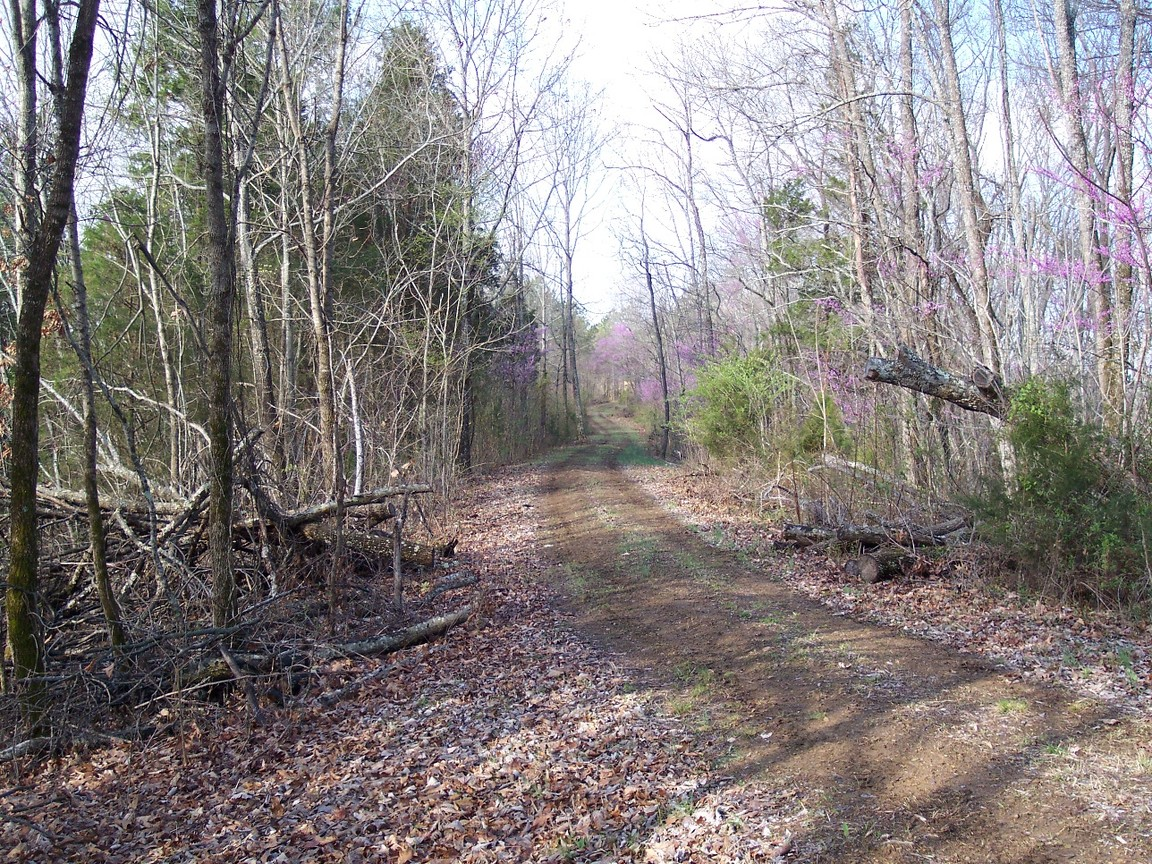 French Mill Road, Dandridge, TN, 37725 -- Homes For Sale