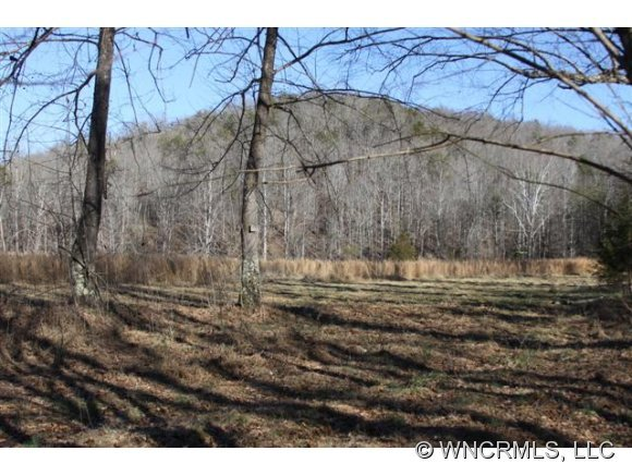0000 Abrams & Moore Road, Mill Spring, NC, 28139 -- Homes For Sale