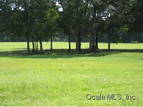 11678 Nw 35 St, Ocala, FL, 34482 -- Homes For Sale