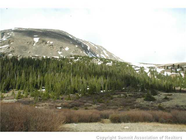 0 Mosquito Pass Road, Fairplay, CO, 80420 -- Homes For Sale