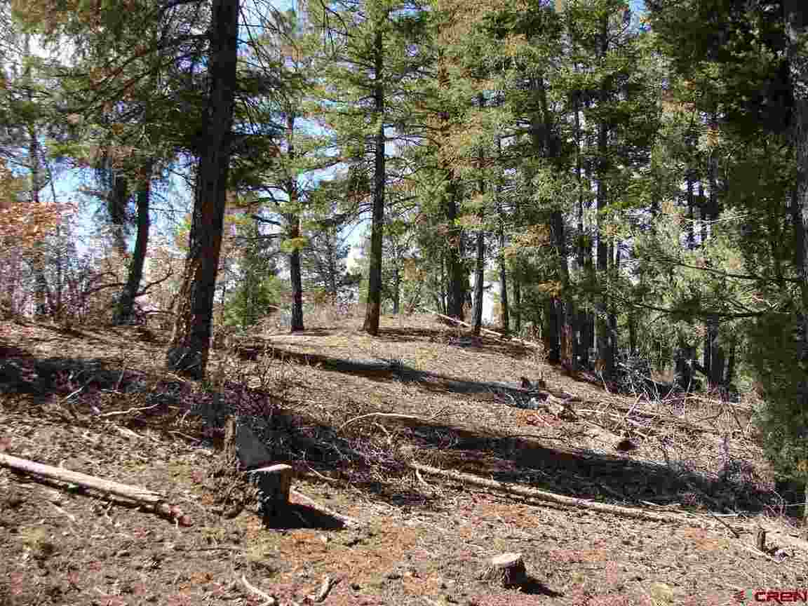 338 Skyline Dr, Pagosa Springs, CO, 81147 -- Homes For Sale