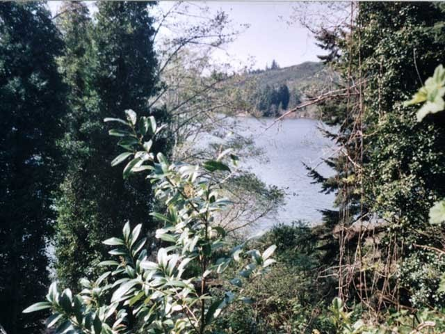 Siltcoos Station Rd, Florence, OR, 97439: Photo 5