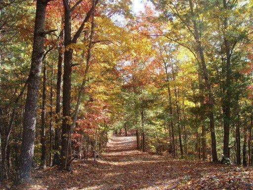 1396 Rafter Rd 2121-L, Tellico Plains, TN, 37385 -- Homes For Sale