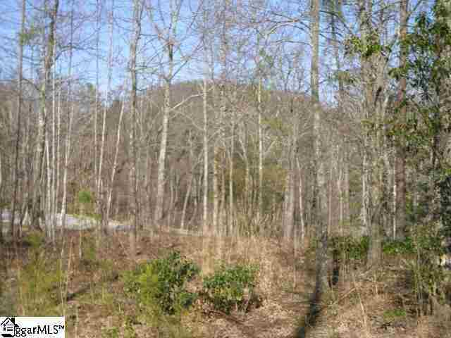 1 Carolina Wren Trail Lot 91 Carolina Wren Trail, Marietta, SC, 29661: Photo 1