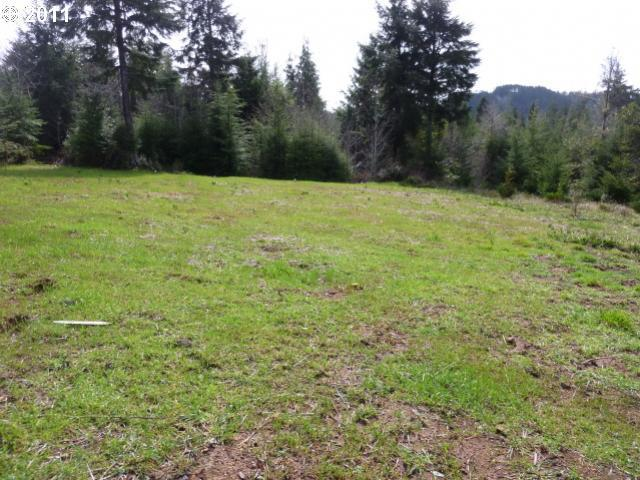 Cedar Valley Rd, Gold Beach, OR, 97444 -- Homes For Sale