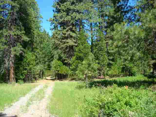 2126 Paddock Way, Mount Shasta, CA, 96067 -- Homes For Sale