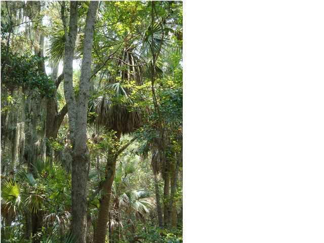 2877 Old Drake Drive, Johns Island, SC, 29455 -- Homes For Sale
