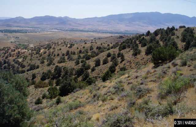 000 Six Mile Canyon 37, Virginia City, NV, 89440 -- Homes For Sale