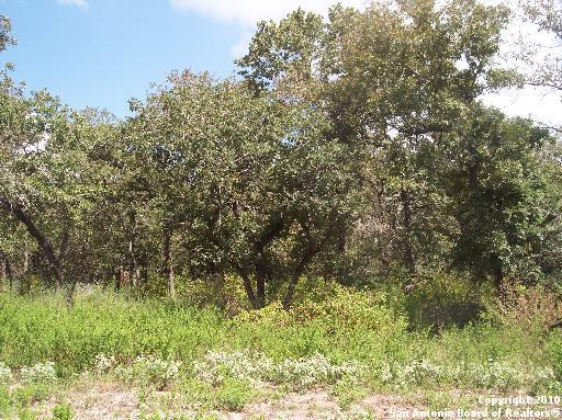 Lot 229 Crockett Street, Luling, TX, 78648 -- Homes For Sale