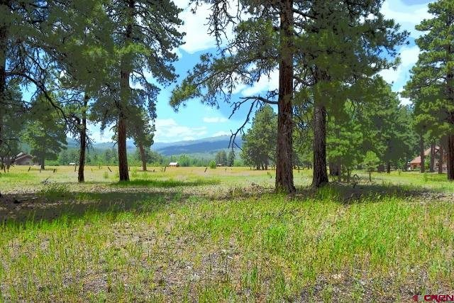 7185 Cr 501, Bayfield, CO, 81122 -- Homes For Sale