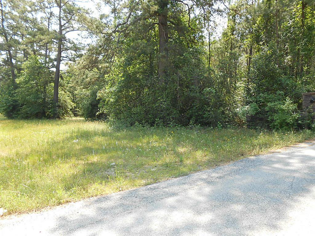 14360 East Highway 105, Conroe, TX, 77306 -- Homes For Sale