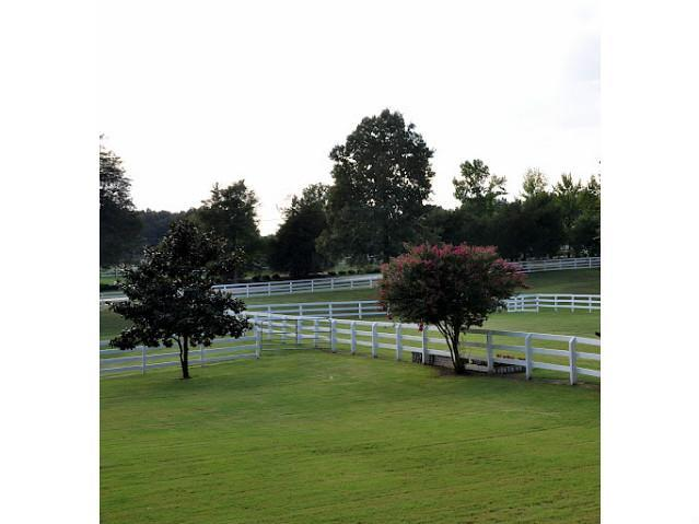 500 N Pisgah Road, Eads, TN, 38028 -- Homes For Sale