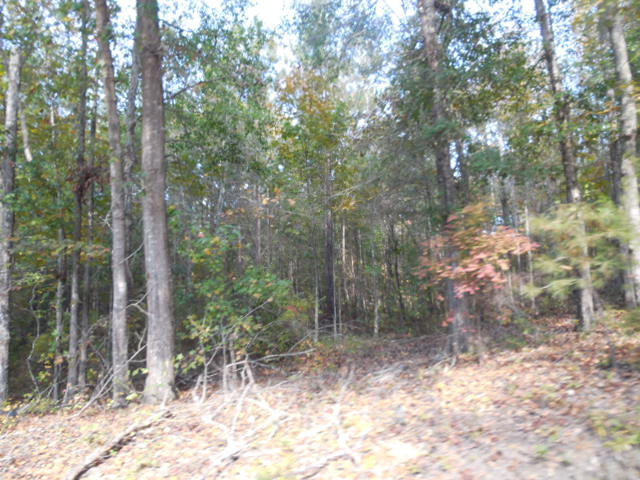 239 Pinedale Dr, Thomson, GA, 30824 -- Homes For Sale