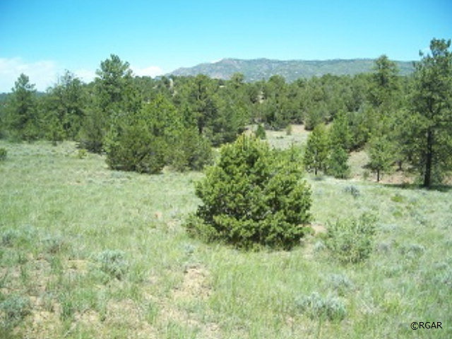 569 Cr 66, Canon City, CO, 81212 -- Homes For Sale