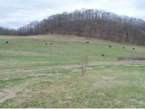 910 Carters Valley Road, Church Hill, TN, 37642 -- Homes For Sale