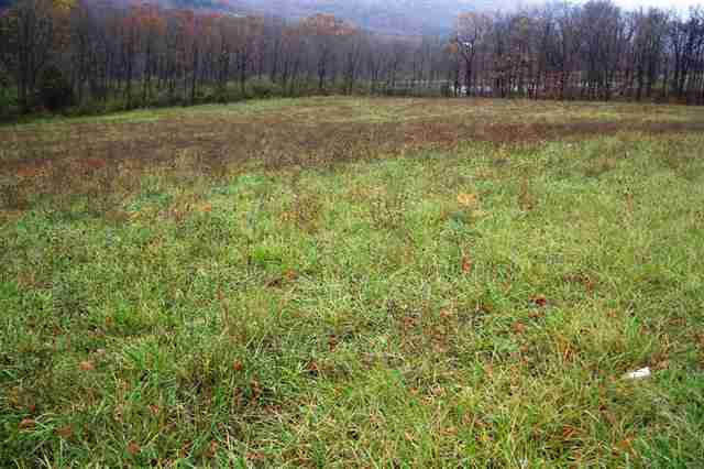 16474 Amberson Rd Lot 2, Spring Run, PA, 17262 -- Homes For Sale