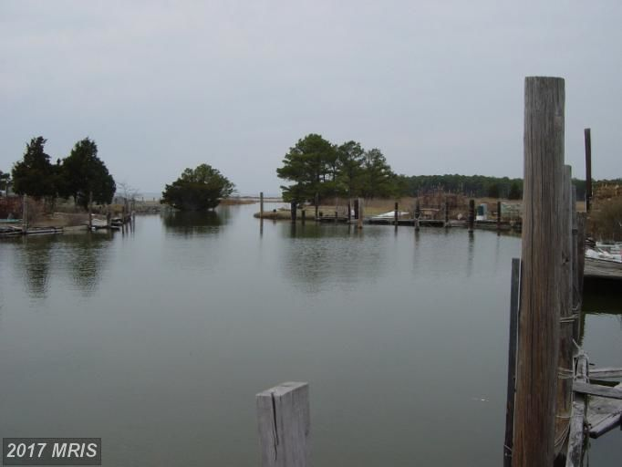 County Road, Fishing Creek, MD, 21634: Photo 22