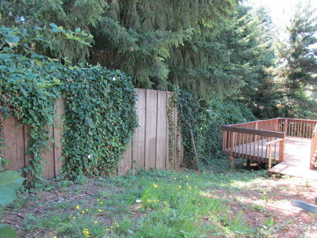 1725 14th Ave Se, Olympia, WA, 98501 -- Homes For Sale