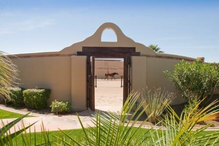 11309 E Arabian Park Drive, Scottsdale, AZ, 85259 -- Homes For Sale
